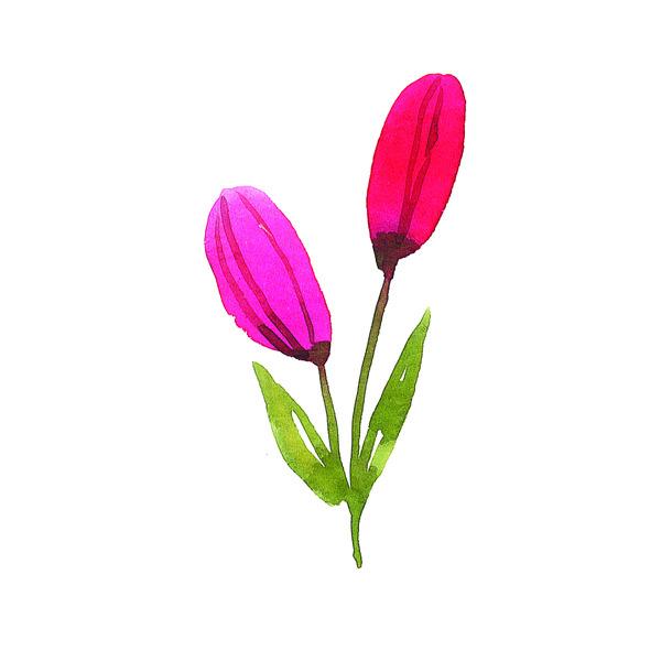 Artwork tulip