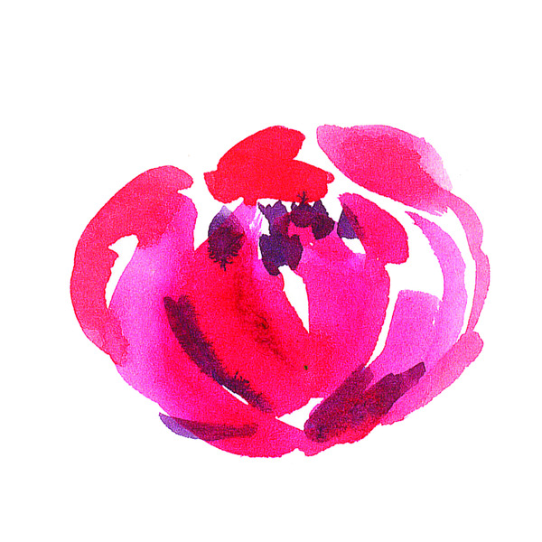 Watercolor hand painted flower